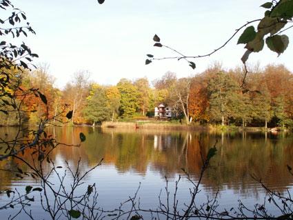 Villa Galina i Hesede Skov