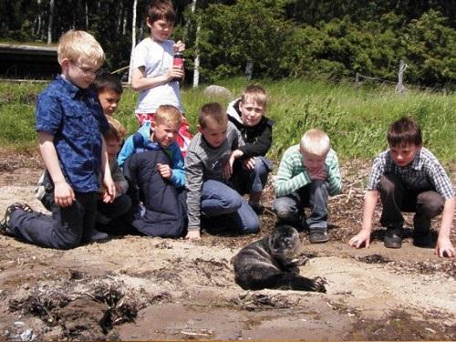 Tue Johansens drengefødselsdag på Avnø naturcenter gav en stor sæloplevelse.