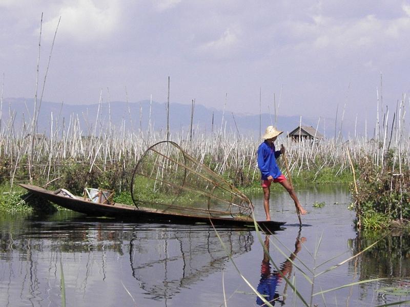 Fisker på Inlesøen i Myanmar