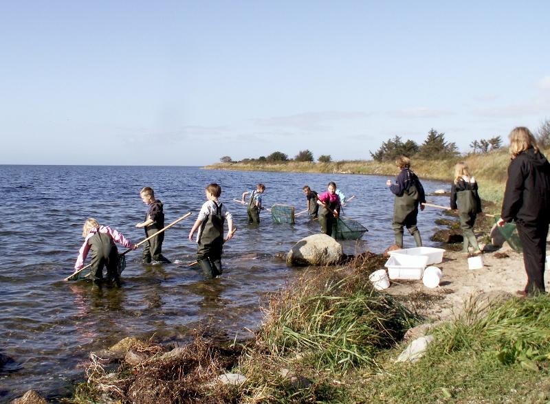 Børn fra Sværdborg skole på udeskoletur på Avnø