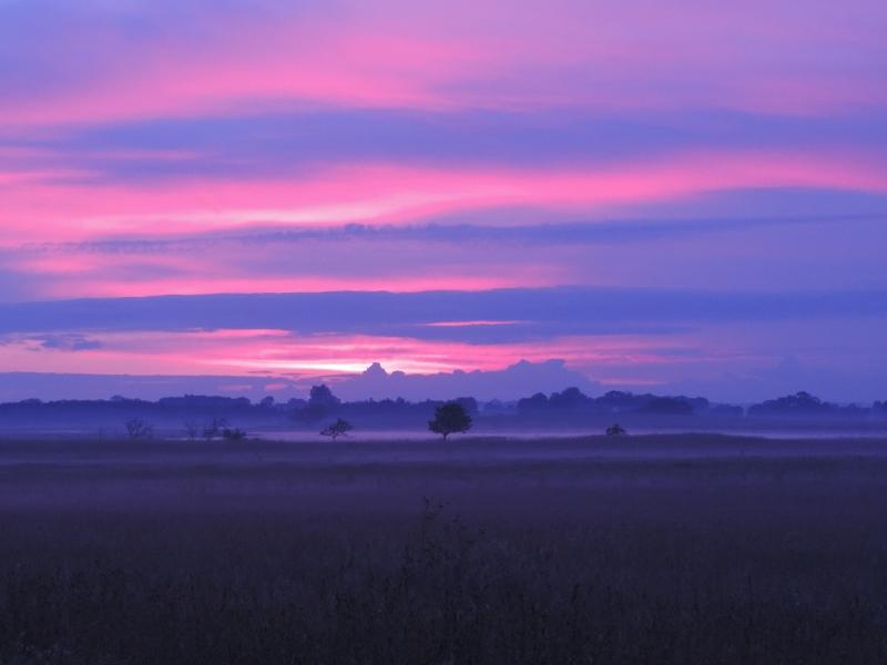 Himlen før solopgangen gav nogle meget flotte røde og lilla farver, og mosekonen bryggede ud over engene.