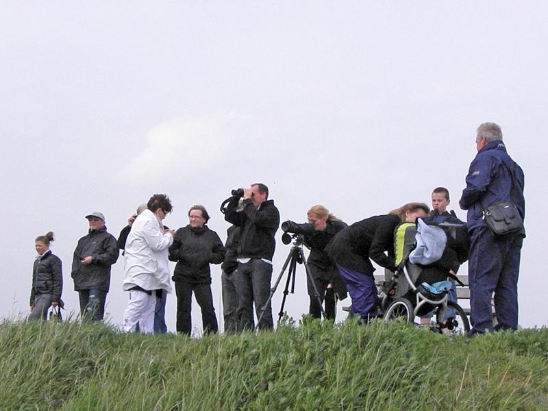 Familiefest på Avnø