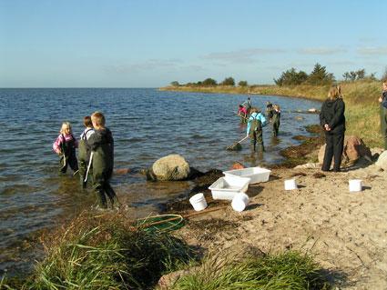 At fange fisk og smådyr i fjorden var den mest populære post