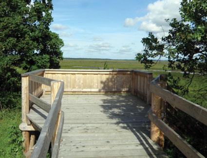 Handicapvenligt fugletårn på Hyldevang